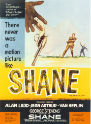 shane_main