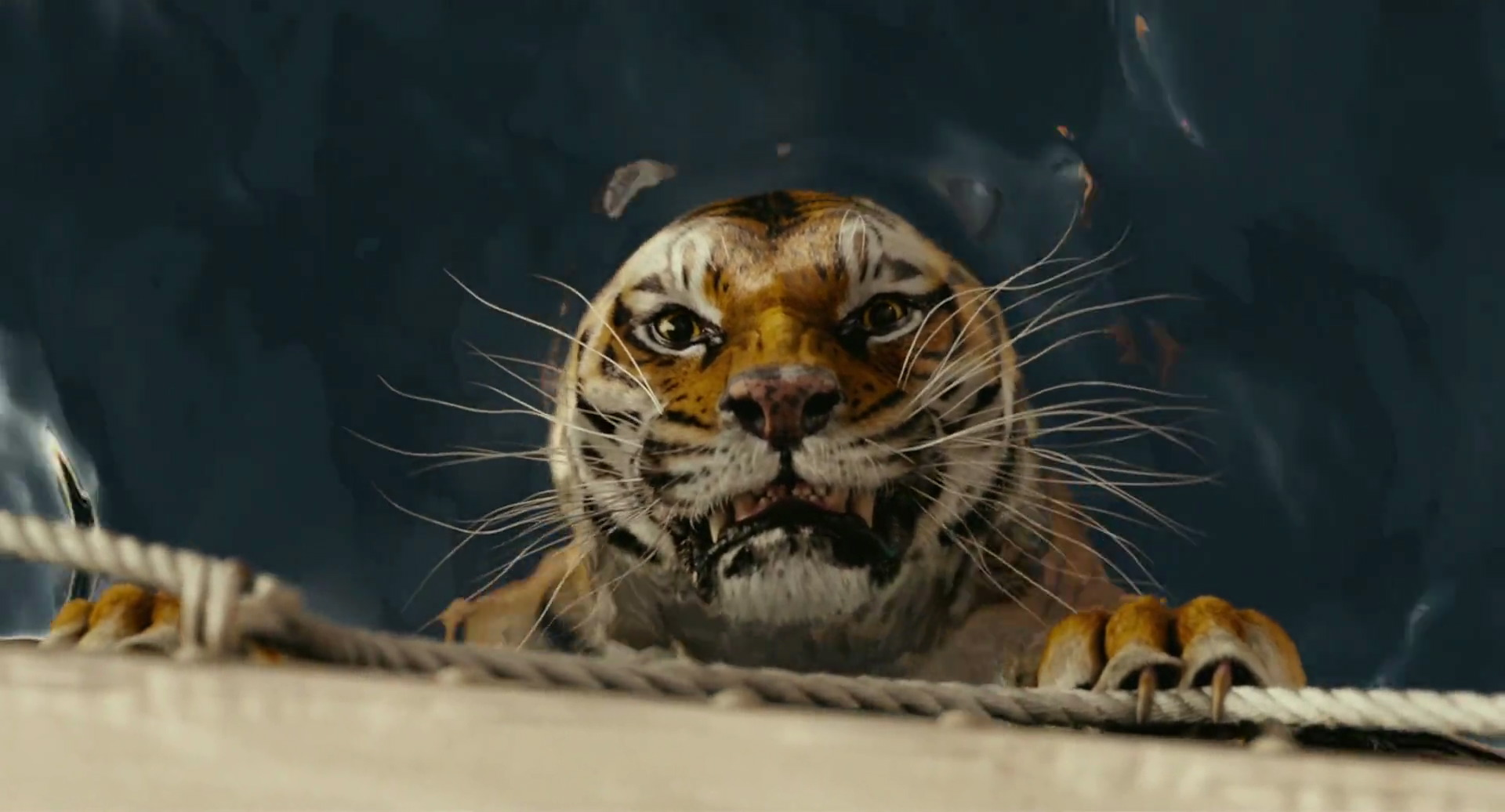 life of pi animals essay Essays and criticism on yann martel's life of pi - criticism life of pi criticism - essay yann martel speaking animals are often a criterion for fables.